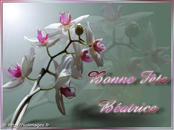 BON MARDI Beatrice_4