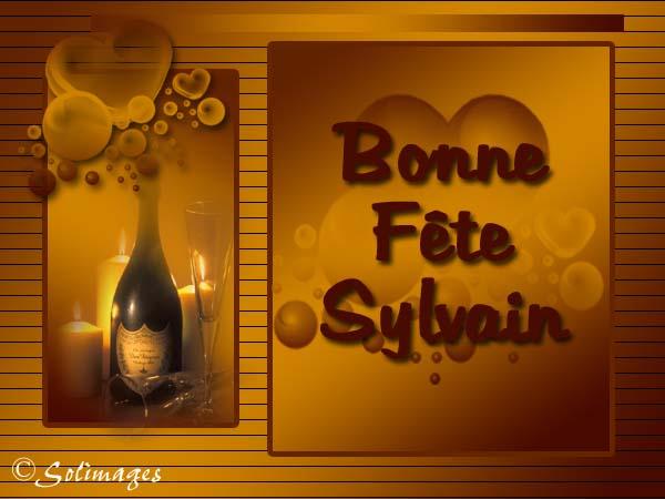 Carte Virtuelle Bonne Fete Sylvain.Cartes Virtuelles Solimages Bonne Fete Sylvain