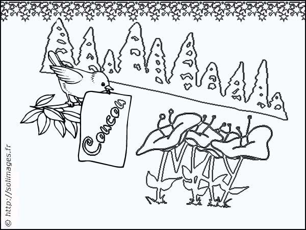 Coloriage Fleur Coucou.Coloriage Carte Oiseau